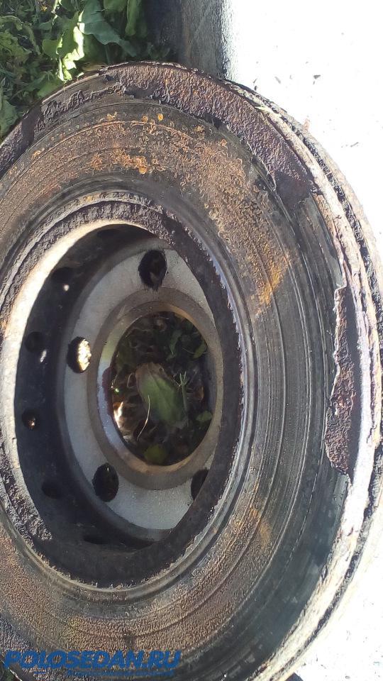 Замена тормозных дисков своими силами VW Polo sedan [ФОТО]